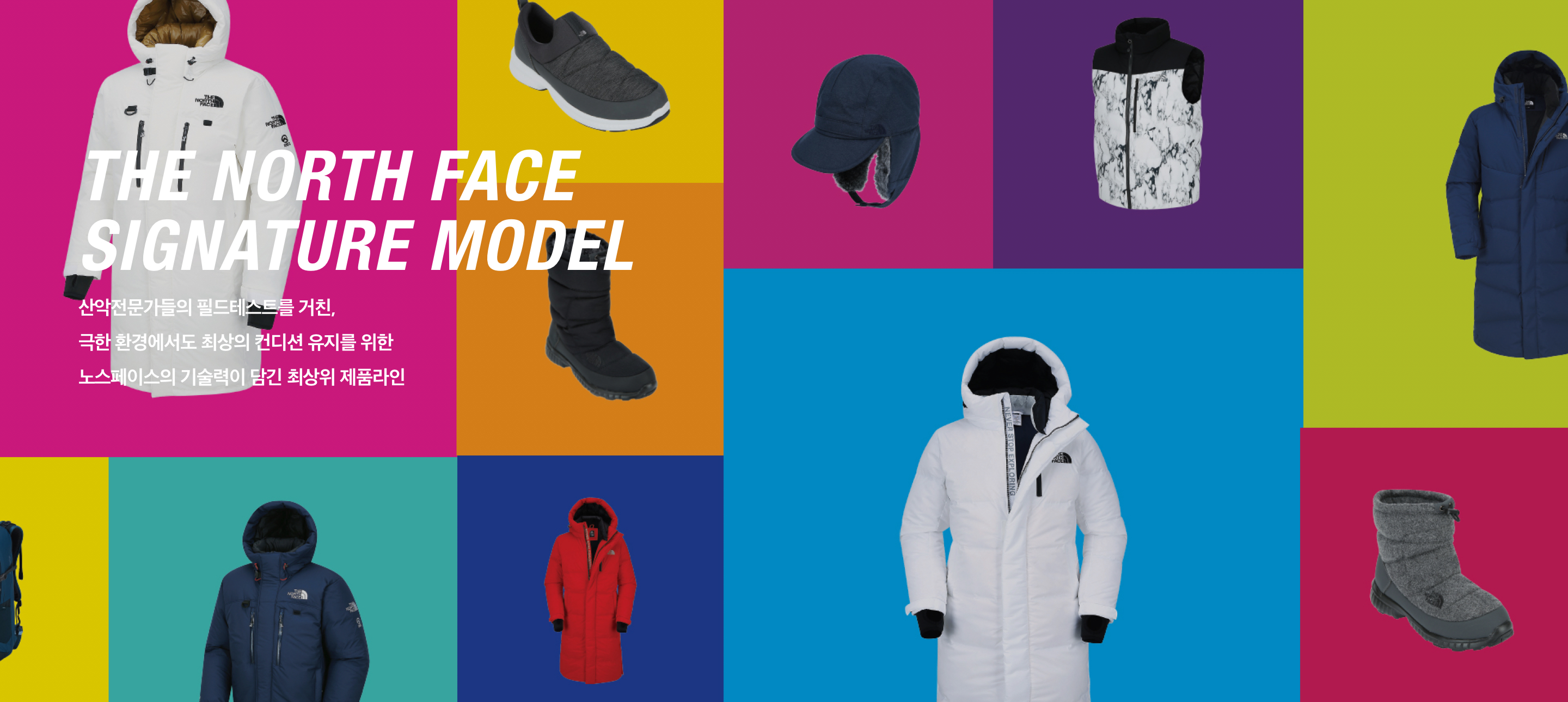the north face signature model